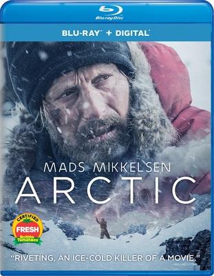 Arctic 2018 .avi AC3 BDRIP - ITA - leggenditaly