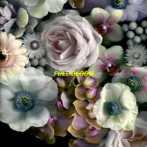 Alpines - Full Bloom (2018)