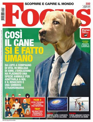 Focus Italia - Giugno 2020