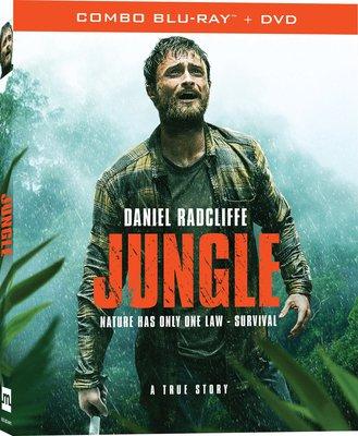 Jungle 2017 .avi AC3 BRRIP - ITA - italiashare