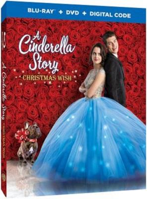 A Cinderella Story - Christmas Wish 2019 .avi AC3 BDRIP - ITA - leggenditaly