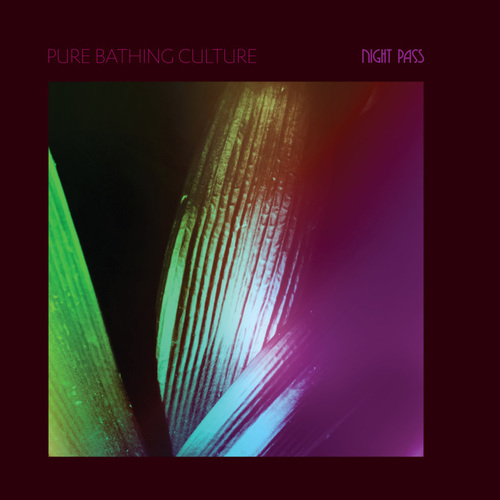 Pure Bathing Culture - Night Pass (2019)