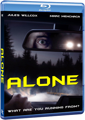 Alone 2020 .avi AC3 BDRIP - ITA - oasidownload