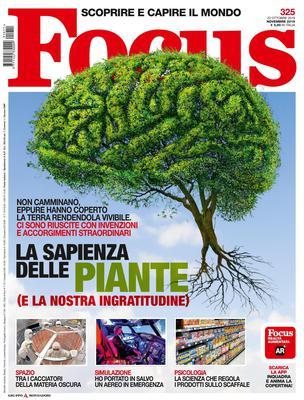 Focus Italia - Novembre 2019