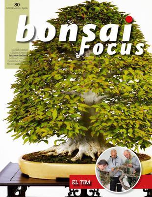 Bonsai Focus - Marzo/Aprile 2019