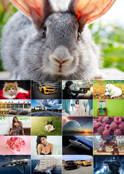 Desktop Wallpapers–Miscellaneous 39