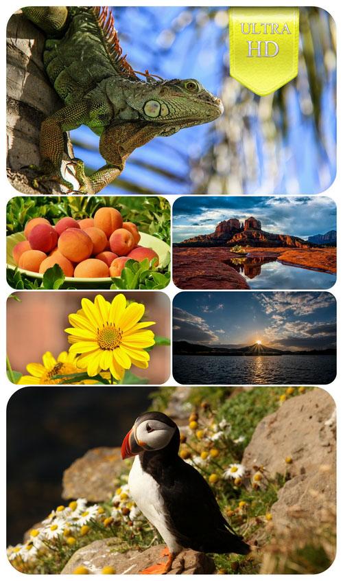 Desktop Wallpapers–Miscellaneous 62-Ultra HD