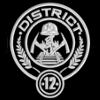 Distrikt 12