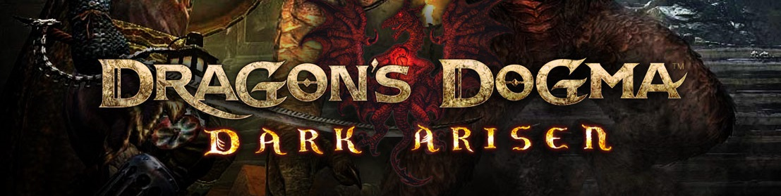 dragonsdogma-darkaristbjwz.jpg
