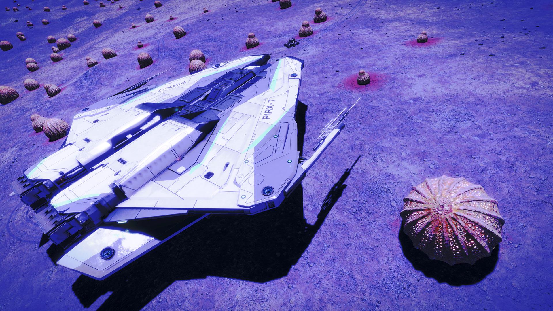 dw2-02-018-schiff.jpg