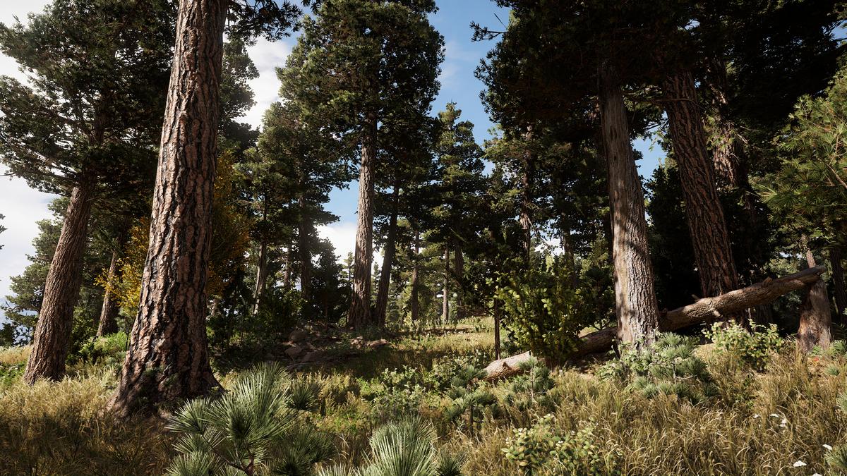 Akustische Wolfsköder Far Cry 5 Karte.Forum De Luxx
