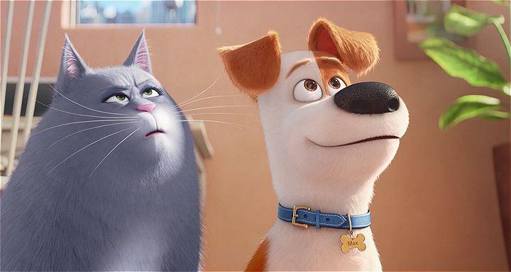 Evcil Hayvanların Gizli Yaşamı Ekran Görüntüsü 1