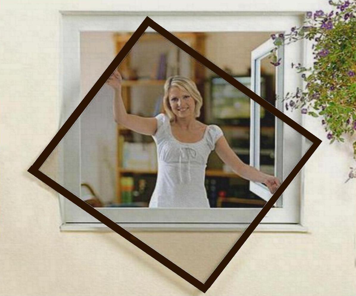 fliegengitter fenster insektenschutz 100x100 braun neu ebay. Black Bedroom Furniture Sets. Home Design Ideas