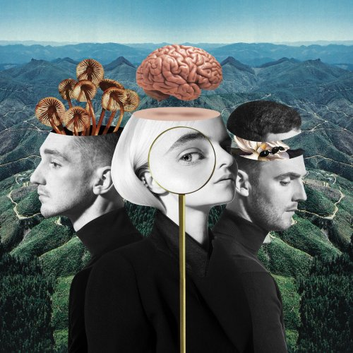 Clean Bandit - What Is Love? (Deluxe Edition) (2018)
