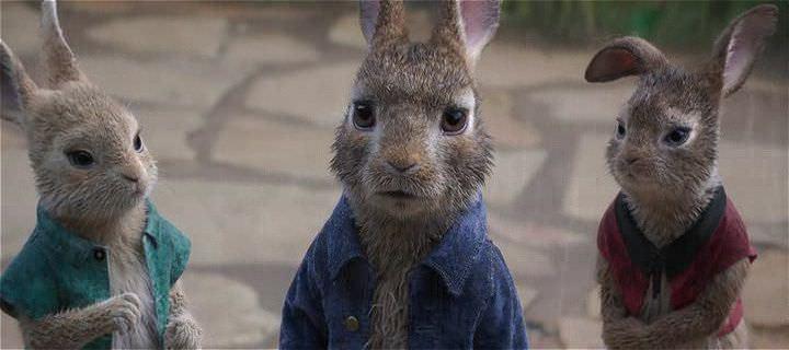 Tavşan Peter Ekran Görüntüsü 1