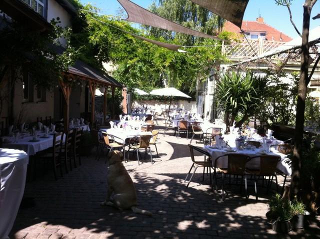 //images.stadtleben.de/locations/oppenheim/57294/foto_17604.jpg