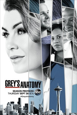Grey's Anatomy - Stagione 14 (2017) (7/24) DLMux ITA ENG AC3 Avi