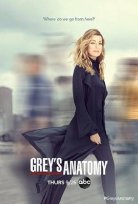 Grey's Anatomy - Stagione 16 (2019) (9/24) WEBMux HEVC 1080P ITA ENG AC3 x265 mkv