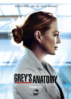 Film Serie TV Greysanatomy17z6kts