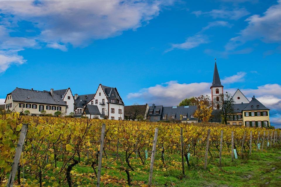 Der Rheingau ist weltberühmt für köstliche Rieslinge, romantische Altstädte und Weinberge direkt am Rhein