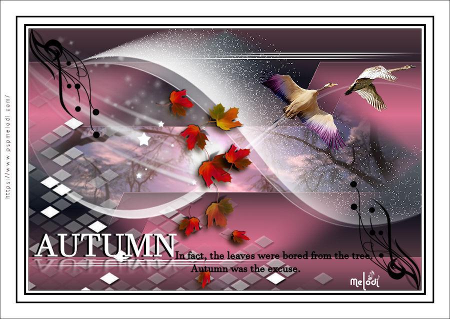hy_autumn1frame1wj2w.jpg