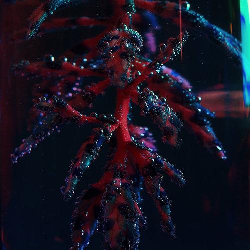 Objekt - Cocoon Crush (2018)