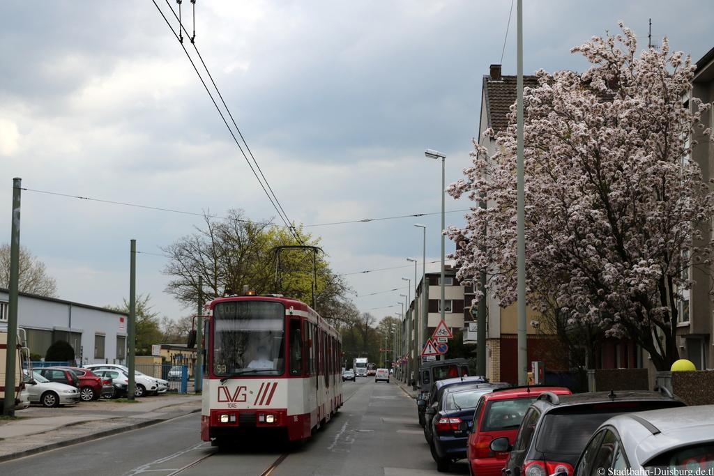 plessingstraße 20 duisburg