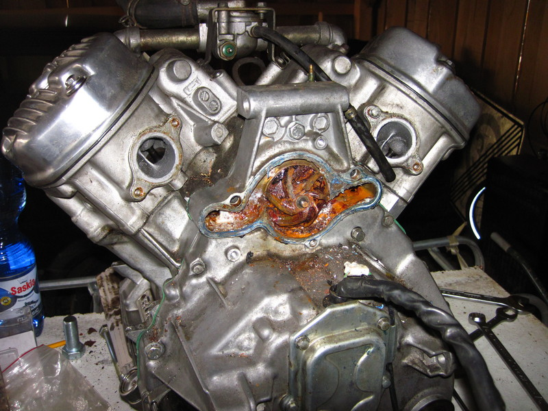 Motor I - Patricks Motor  Img_03387mscx