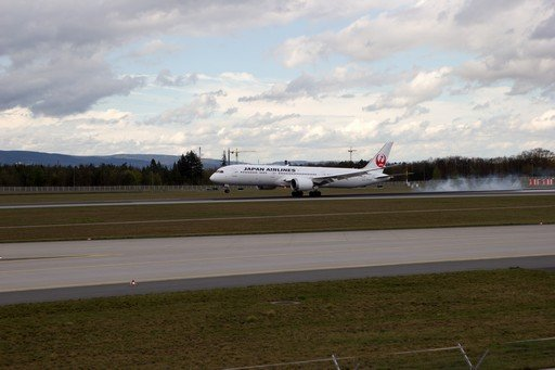 Japan Airlines B787-9 JA862J am Flughafen Frankfurt
