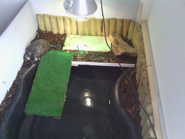 Aquarium Unterschrank Ikea : ikea expedit als unterschrank ~ Watch28wear.com Haus und Dekorationen
