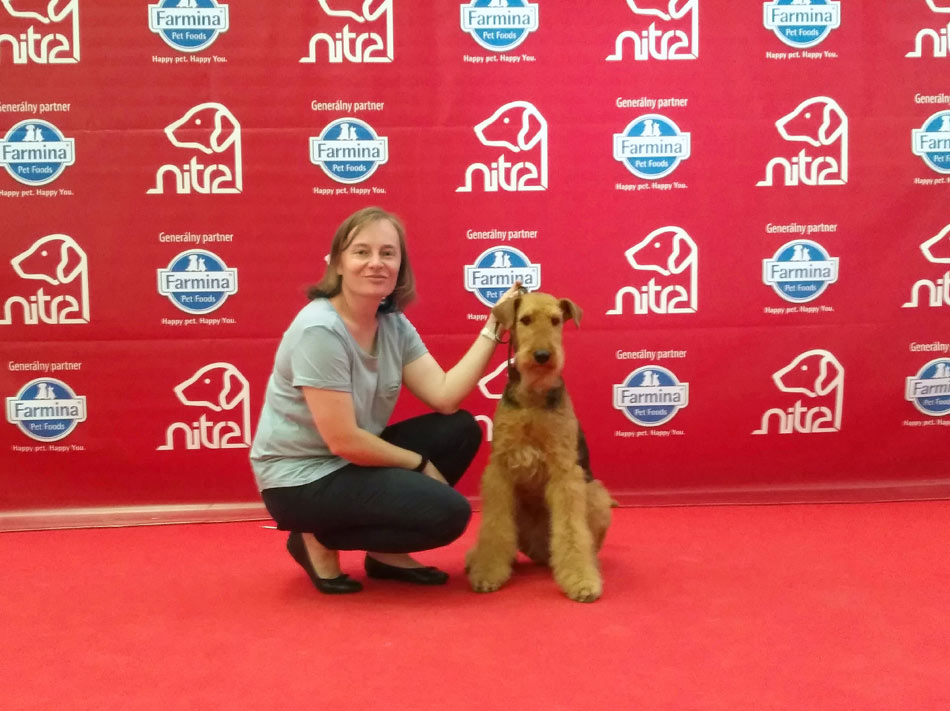 Airedale Terrier Mira Nitra CACIB