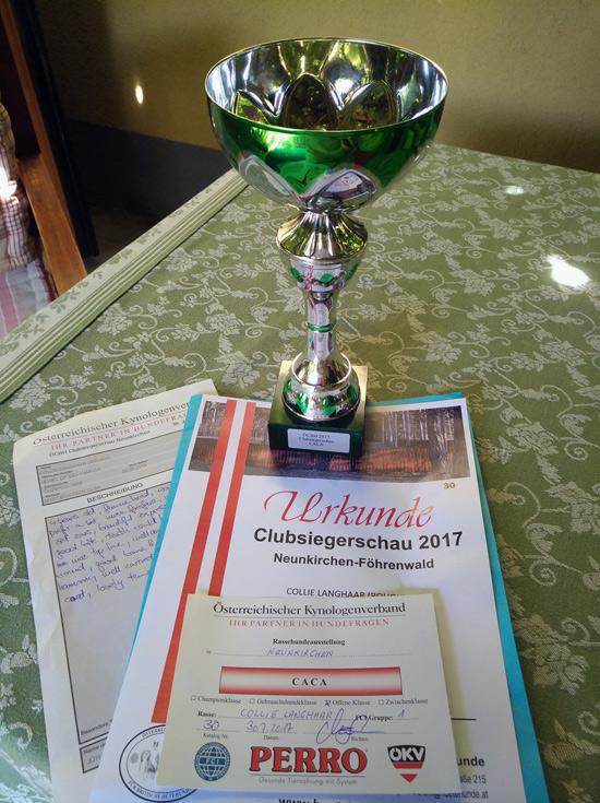 Clubsiegerschau 2017 Pokal