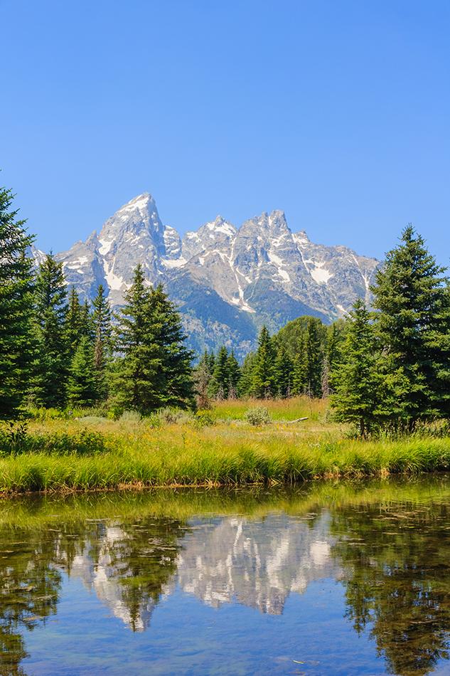 Keeping it Domestic: Grand Teton National Park - FlyerTalk Forums