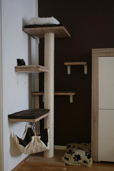 zeigt her eure eigenbau kratzm bel seite 61 katzen forum. Black Bedroom Furniture Sets. Home Design Ideas