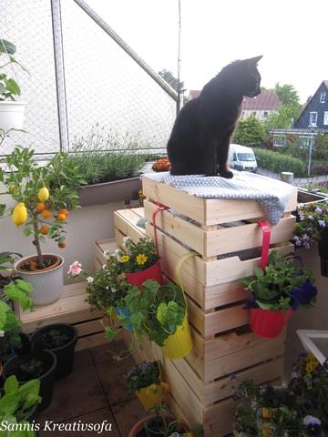 Blackys Katzentreppe mit vertikalen Garten