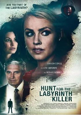 Nel Labirinto Del Serial Killer (2013) HDTV 720P ITA  AC3 x264 mkv