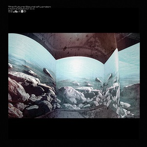 The Future Sound of London – Environment 6.5 (2016)