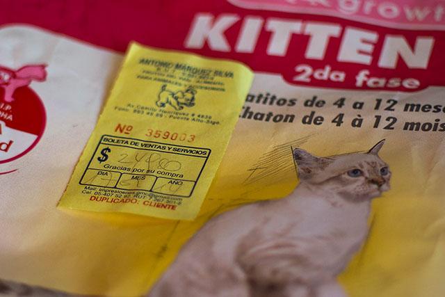 https://abload.de/img/kitten2gkfp.jpg