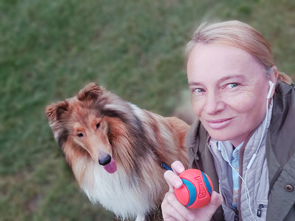 Collie und Airedale Terrier Zucht Wien