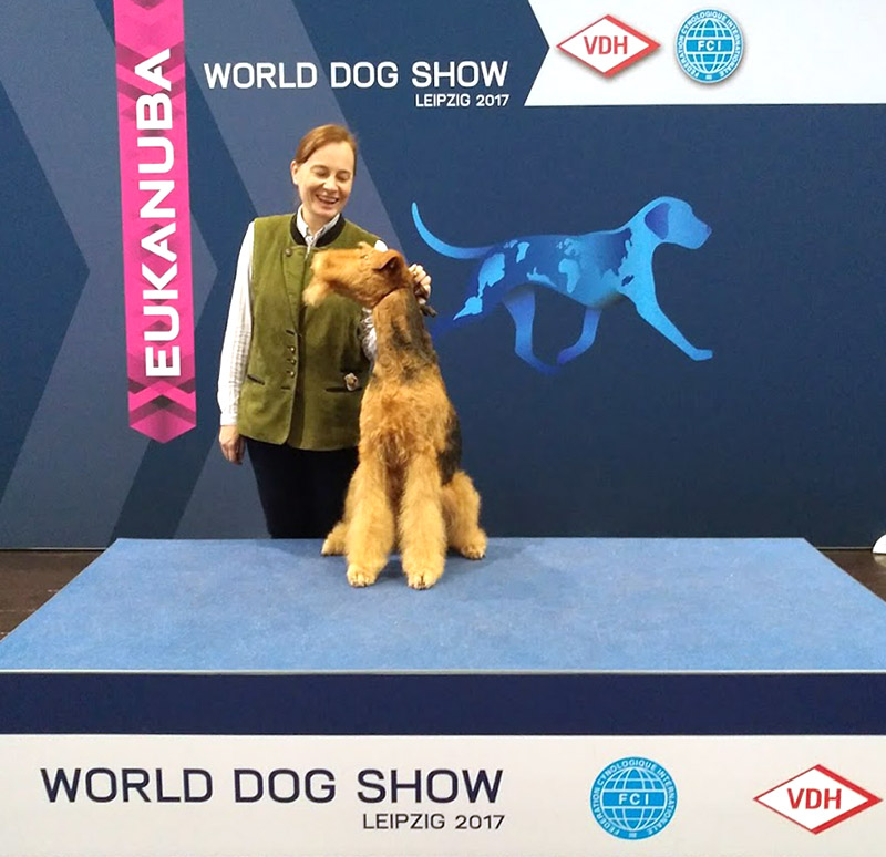 Airedale Terrier World Dog Show 2017