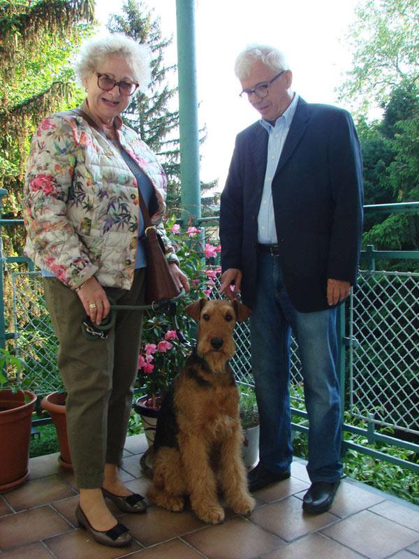 Airedale Terrier Wien