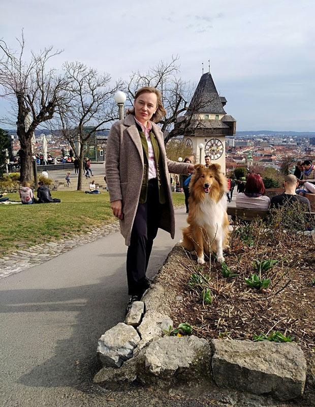 Airedale Terrier, Collie Zucht,  Österreich