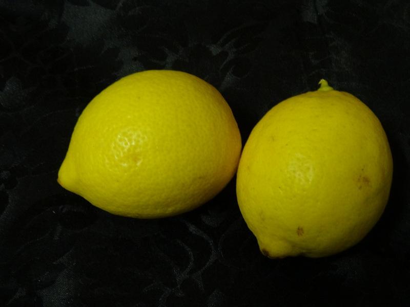 [Resim: limonjtowd.jpg]