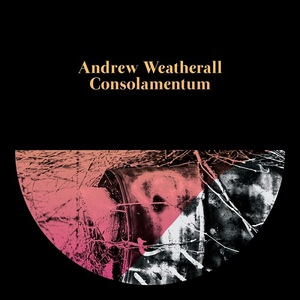 Andrew Weatherall - Consolamentum (2016)
