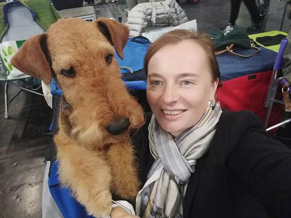 Airedale Terrier vom Wiener-Stern, IHA Wels 2017