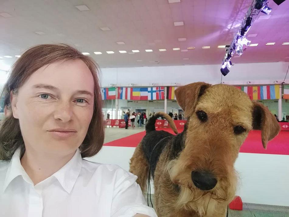 Airedale Terrier Mira Wiener Stern