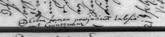 pommern mosel genealogie