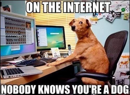 on-the-internet-nobodnez0p.jpg
