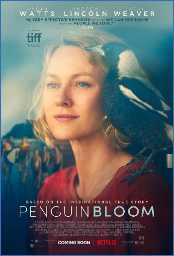 Penguin Bloom 2020 1080p BluRay x264 DTS-WiKi