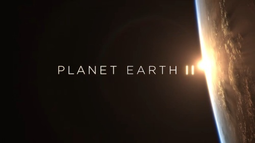 planet.earth.ii.s01e0x2sd6.jpg
